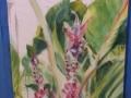 Banana-Plant-Final-by-Kathyrn-Morganelli