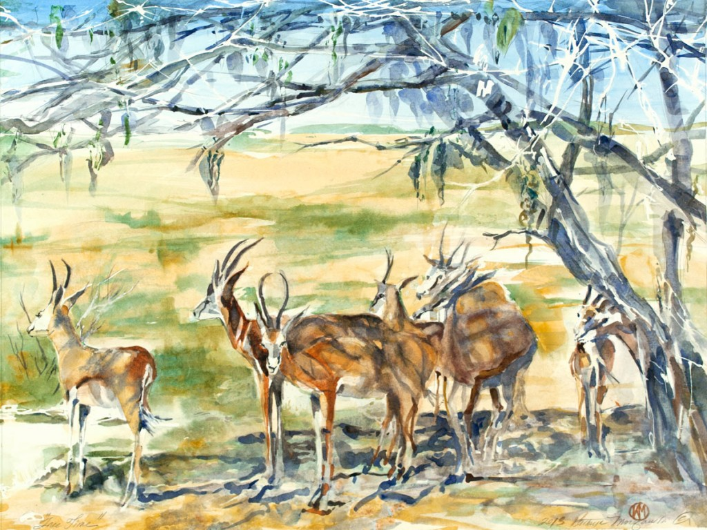 "Impalas ""Tree Time"" by Kathyrn Morganelli"