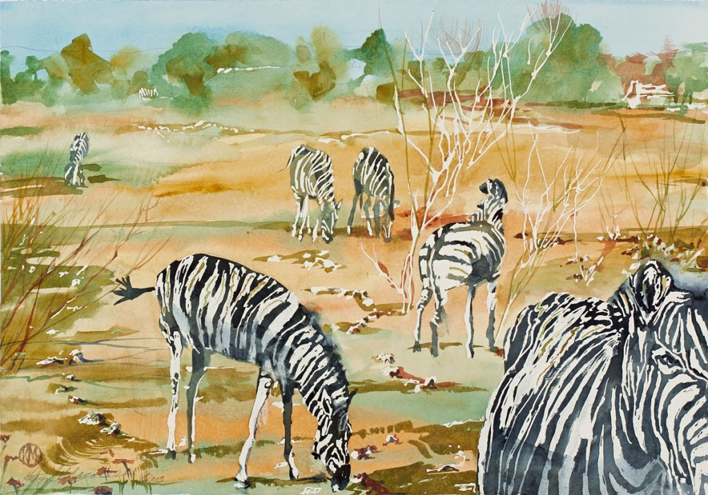 Tribute to Team Zebra by Kathryn Morganelli